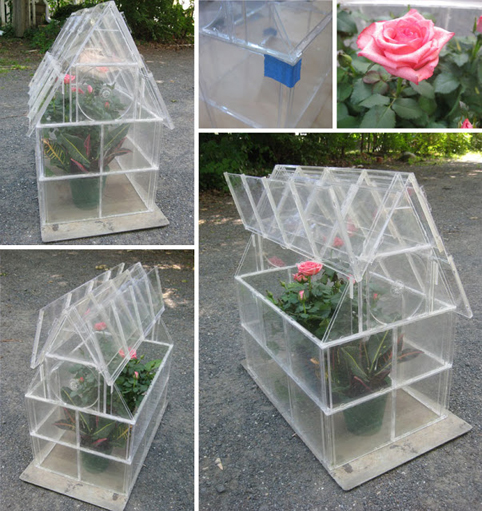 a greenhouse with cd cases