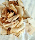 2 Formas de hacer flores con filtros de café reciclados