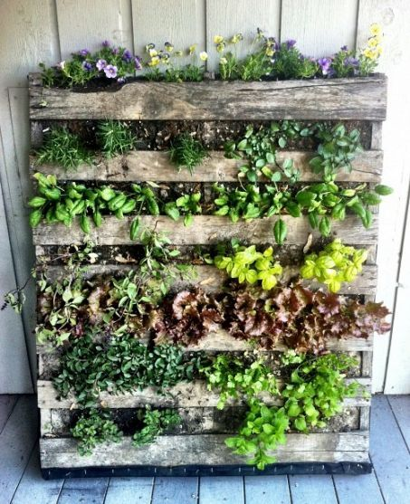 palets-jardinera