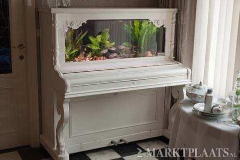 piano-acuario