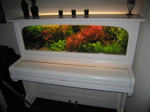 piano-acuario4