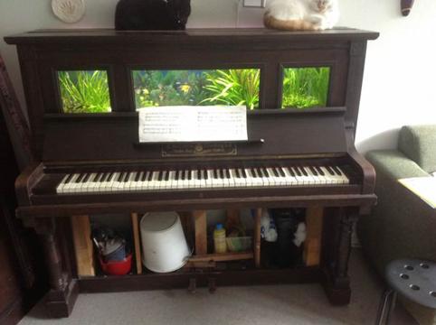 piano-acuario5a
