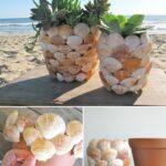 Ideas para reutizar en la playa. Conchas Marina